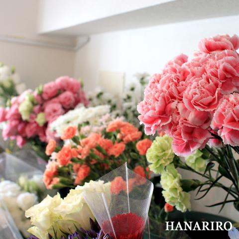 20091009 p1 今日の花RiRo!(^^♪