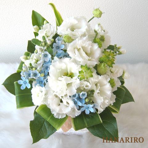 20110119 f3 花RiRoフラワーギフトコレクション。  20110119 03