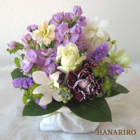 20110207 f1 花RiRoフラワーギフトコレクション。  20110207 01
