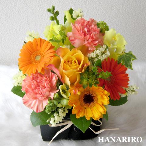 20120111 f1 花RiRoフラワーギフトコレクション。  20120111 1