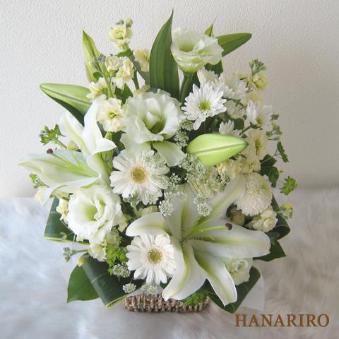 20120125 f2 花RiRoフラワーギフトコレクション。  20120125 2