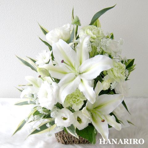 20120126 f2 花RiRoフラワーギフトコレクション。  20120126 2