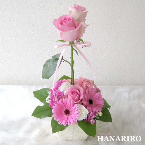 20120126 f3 花RiRoフラワーギフトコレクション。  20120126 3