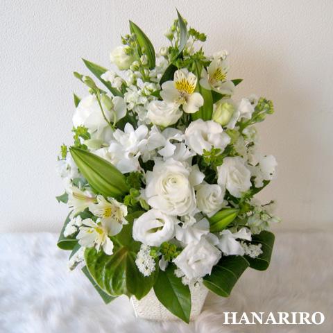 20120229 f2 花RiRoフラワーギフトコレクション。  20120229 2