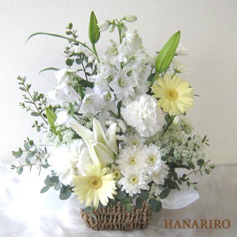 20120314 f1 花RiRoフラワーギフトコレクション。  20120314 1
