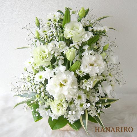 20120330 f3 花RiRoフラワーギフトコレクション。  20120330 3