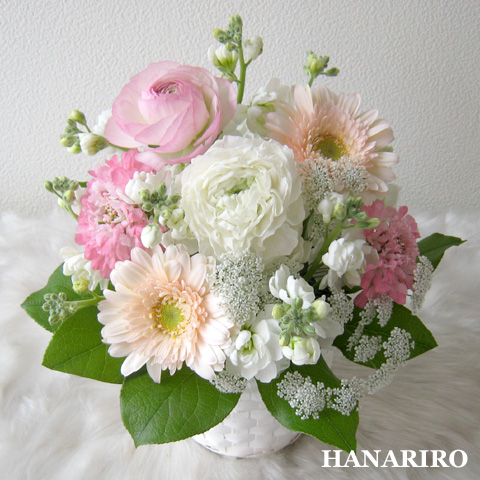20120413 f1 花RiRoフラワーギフトコレクション。  20120413 1