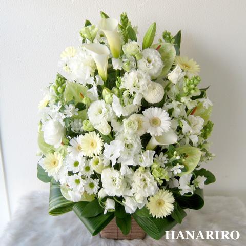 20120419 f3 花RiRoフラワーギフトコレクション。  20120419 3