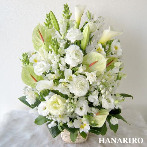 20120420 f2 花RiRoフラワーギフトコレクション。  20120420 2