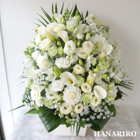 20120424 f1 花RiRoフラワーギフトコレクション。  20120424 1